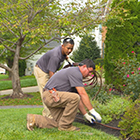 Landscape Estimator - Landscaping Employment Opportunities