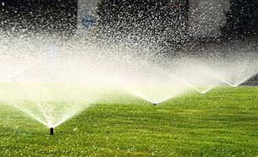 garden-sprinkler-on-the-green-lawn-000046828030_Large-mobile.jpg